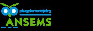 logo_ansems